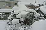 2012_0204_1