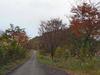 Kiyosatoku4061111